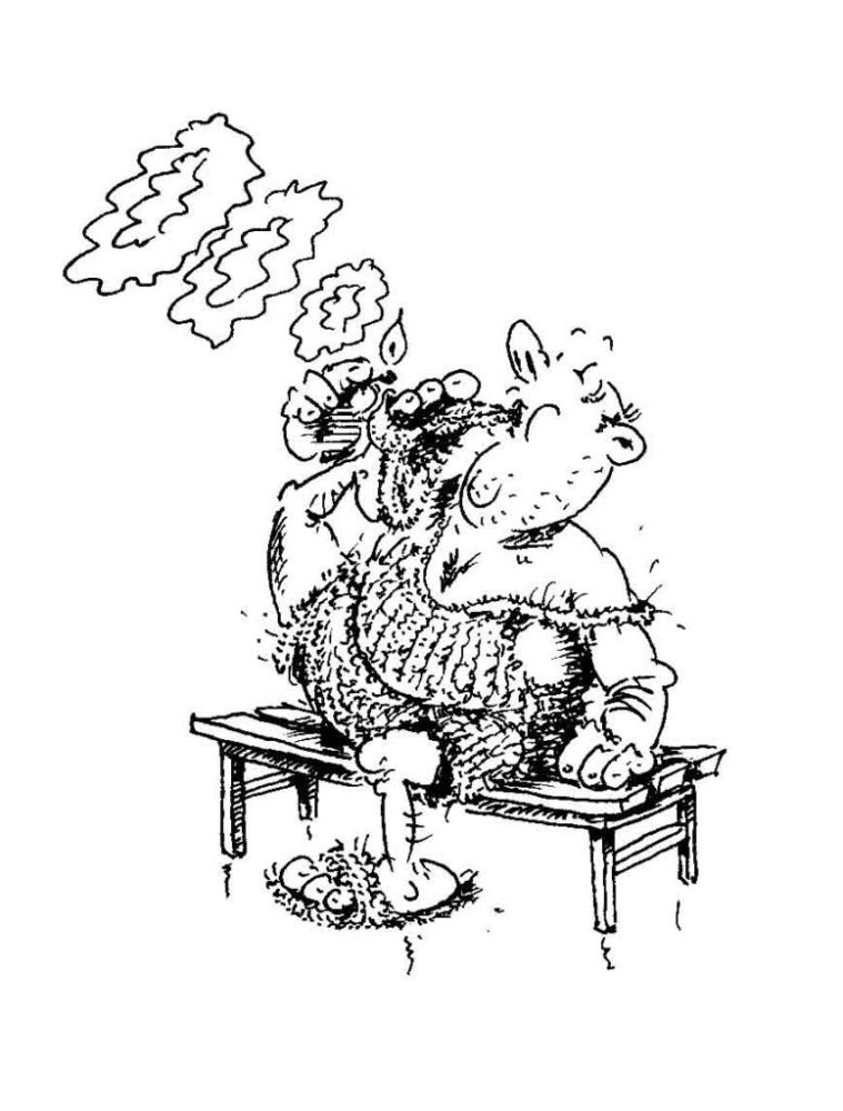 Karikatur Kotzer